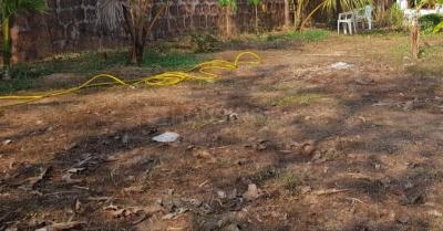 600 Sq.ft Residential Plot for Sale in Salcete, Goa