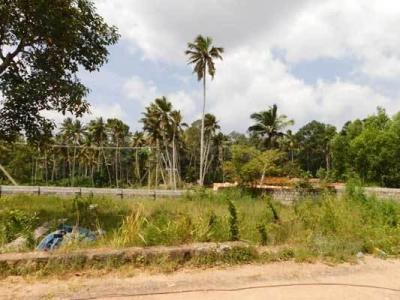Gallery Cover Image of  Sq.ft Residential Plot for buy in Balaramapuram for 3000000