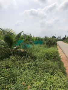 43560 Sq.ft Residential Plot for Sale in Yelachanayakanapura, Bangalore