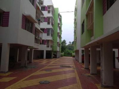Gallery Cover Image of 1200 Sq.ft 3 BHK Apartment for rent in Green Wood, Narendrapur for 10000
