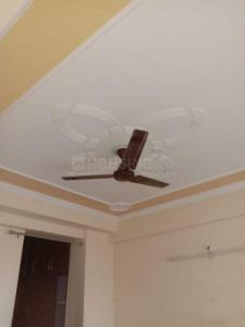 Gallery Cover Image of 1235 Sq.ft 2 BHK Apartment for rent in Noida Extension for 9500