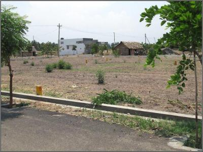 Gallery Cover Image of  Sq.ft Residential Plot for buy in Keeranatham for 1165500