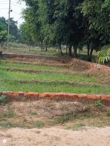 Gallery Cover Image of  Sq.ft Residential Plot for buy in Sector 44 for 350000