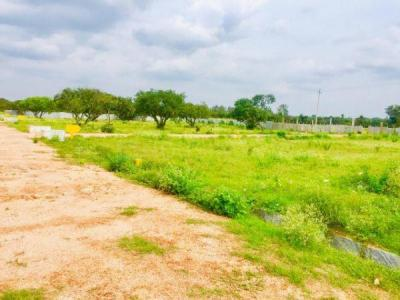 Gallery Cover Image of  Sq.ft Residential Plot for buy in Cheemasandra for 1395000