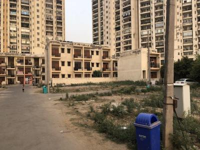 Gallery Cover Image of 540 Sq.ft 2 BHK Independent Floor for buy in Sector 49 for 1200000