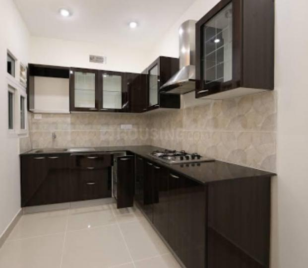 Kitchen Image of 950 Sq.ft 3 BHK Apartment for rent in Sector 82 for 8000