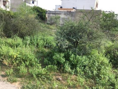 Gallery Cover Image of  Sq.ft Residential Plot for buy in Jagatpura for 68775000