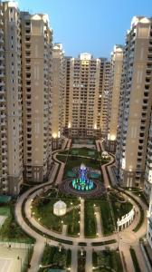Gallery Cover Image of 2505 Sq.ft 4 BHK Apartment for rent in Chi V Greater Noida for 20000