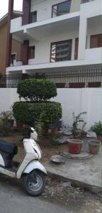 Gallery Cover Image of 550 Sq.ft 1 BHK Independent Floor for rent in Sector 70 for 10000
