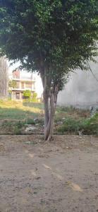 1548 Sq.ft Residential Plot for Sale in Shastri Nagar, Ghaziabad