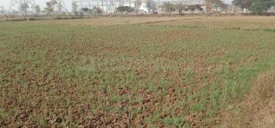 1000 Sq.ft Residential Plot for Sale in Naubatpur, Patna