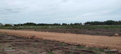 2400 Sq.ft Residential Plot for Sale in Neelambur, Coimbatore