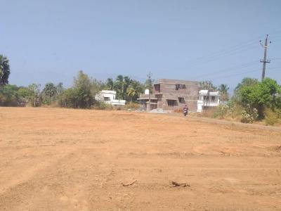 3375 Sq.ft Residential Plot for Sale in Naubatpur, Patna