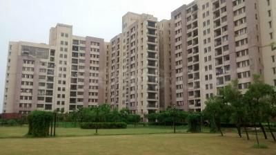 Gallery Cover Image of 1705 Sq.ft 3 BHK Apartment for rent in PI Greater Noida for 13500