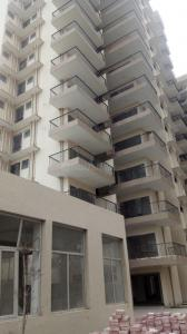 Gallery Cover Image of 600 Sq.ft 2 BHK Apartment for rent in Adore Happy Homes Exclusive, Sector 86 for 6000