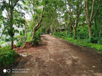 Gallery Cover Image of  Sq.ft Residential Plot for buy in Alto Porvorim for 38593500
