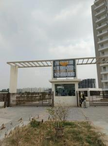 Gallery Cover Image of 560 Sq.ft 2 BHK Apartment for rent in Sector 95 for 10000