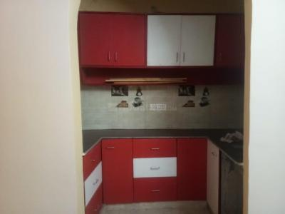 Gallery Cover Image of 550 Sq.ft 2 BHK Independent Floor for buy in Burari for 2050000