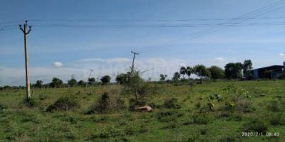 900 Sq.ft Residential Plot for Sale in Raghunathapally, Hyderabad