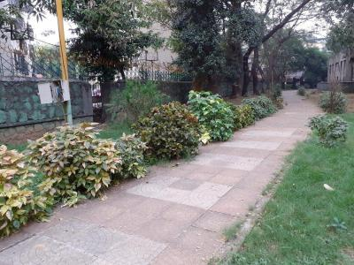 Gallery Cover Image of 565 Sq.ft 1 BHK Apartment for rent in Kopar Khairane for 18000