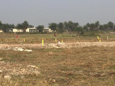 Gallery Cover Image of  Sq.ft Residential Plot for buy in Thakurpukur for 500000