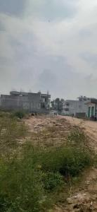 Gallery Cover Image of 1710 Sq.ft Residential Plot for buy in Sector 66 for 3040000