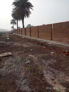 750 Sq.ft Residential Plot for Sale in Gram Baroli, Indore