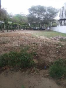 1000 Sq.ft Residential Plot for Sale in Sector 60, Gurgaon