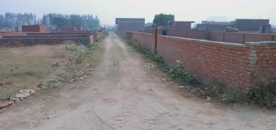 Gallery Cover Image of 450 Sq.ft Residential Plot for buy in Sector 142 for 540000