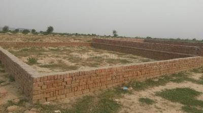 780 Sq.ft Residential Plot for Sale in Sector 91, Faridabad
