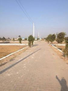 Gallery Cover Image of  Sq.ft Residential Plot for buy in Lakhan for 980000