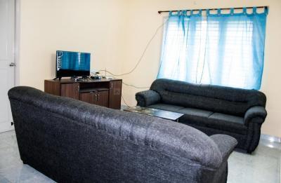 Living Room Image of PG 4643003 Mahadevapura in Mahadevapura