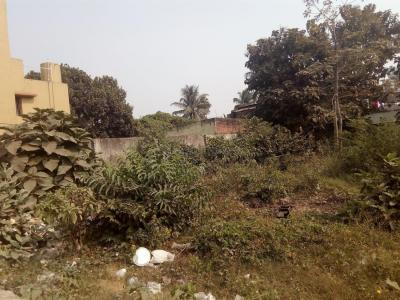 Gallery Cover Image of  Sq.ft Residential Plot for buy in Bidhannagar for 10800000