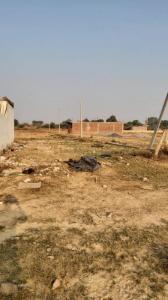540 Sq.ft Residential Plot for Sale in Yeida, Greater Noida