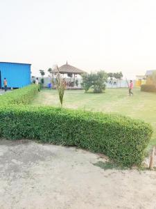 10000 Sq.ft Residential Plot for Sale in Sector 110, Noida