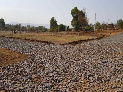 Gallery Cover Image of  Sq.ft Residential Plot for buy in Pali for 598000