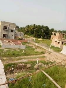 Gallery Cover Image of  Sq.ft Residential Plot for buy in Sankharipota for 140000