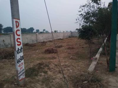 Gallery Cover Image of  Sq.ft Residential Plot for buy in Kailash Nagar for 900000