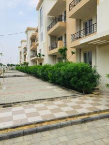 Gallery Cover Image of 1400 Sq.ft 3 BHK Apartment for rent in Sector 84 for 9000