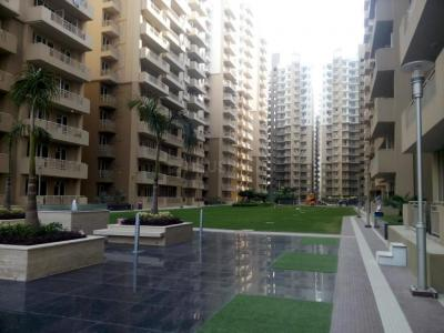 Gallery Cover Image of 1556 Sq.ft 3 BHK Apartment for rent in Sector 77 for 20000