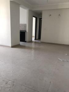 Gallery Cover Image of 1172 Sq.ft 2 BHK Apartment for rent in Pan Oasis, Sector 70 for 17500