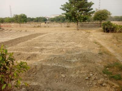 Gallery Cover Image of  Sq.ft Residential Plot for buy in Sector 162 for 1250000