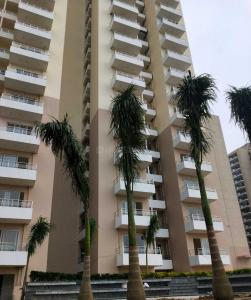 Gallery Cover Image of 1120 Sq.ft 2 BHK Apartment for buy in Emenox La Solara, Noida Extension for 3550000