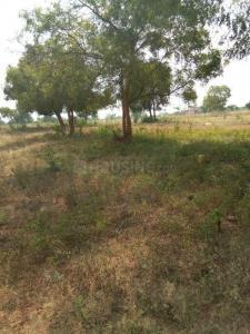 1700 Sq.ft Residential Plot for Sale in Rayudu Pakalu, Rajahmundry