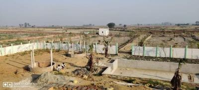 Gallery Cover Image of 900 Sq.ft Residential Plot for buy in Murshadpur for 1200000