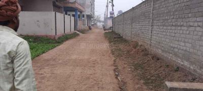 1554 Sq.ft Residential Plot for Sale in Phulwari Sharif, Patna