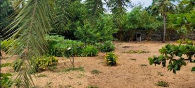 8679 Sq.ft Residential Plot for Sale in Kotivakkam, Chennai