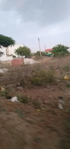 1440 Sq.ft Residential Plot for Sale in Sector 62, Faridabad
