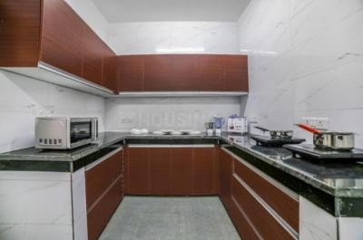 सेक्टर 23 में स्टेफ़ीट के किचन की तस्वीर
