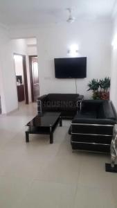 Gallery Cover Image of 1129 Sq.ft 2 BHK Apartment for rent in Noida Extension for 8500